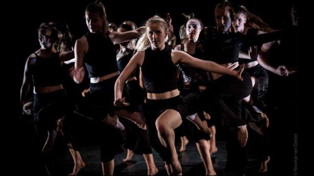 professionele dansacademie in Den Haag