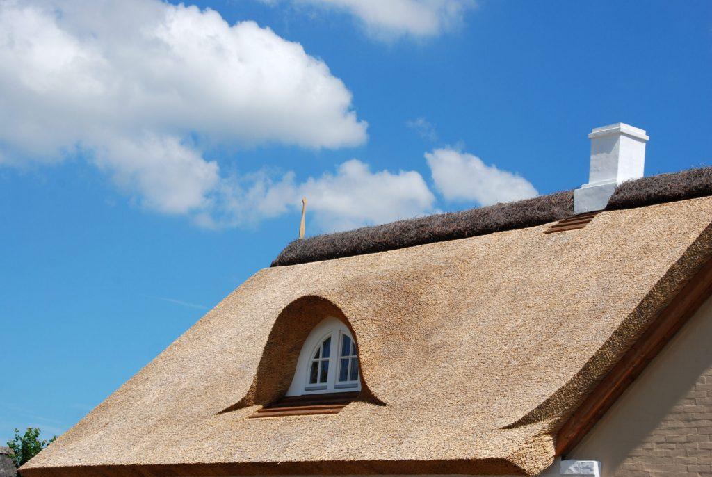 rieten dak impregneren